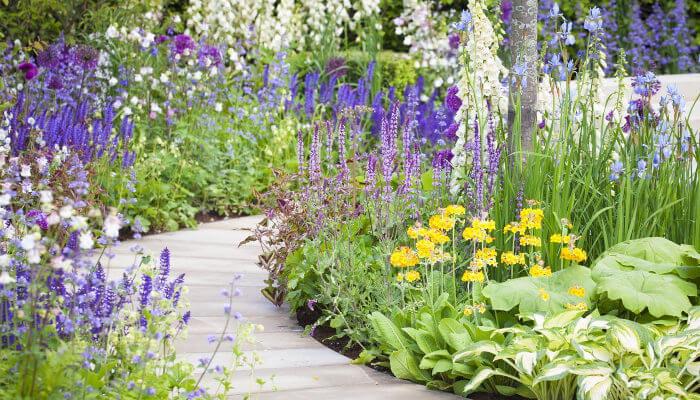 jardines colorido