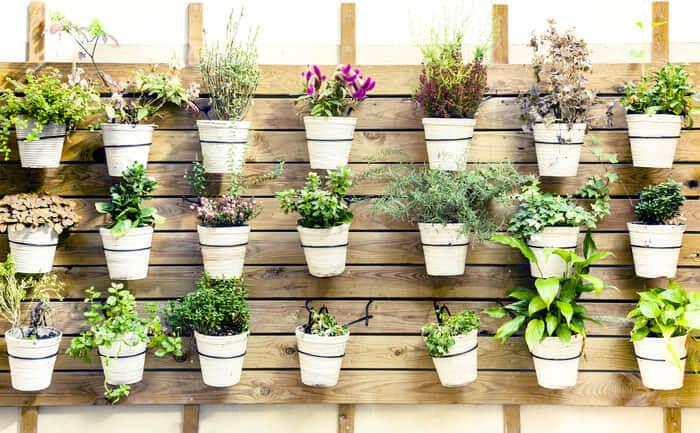 jardines verticales para exterior