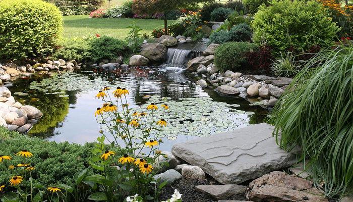 jardin con agua